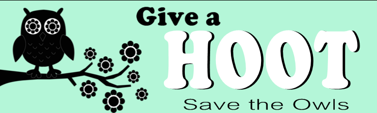 Animal Lover Bumper Sticker Idea - Give a Hoot | Banners.com