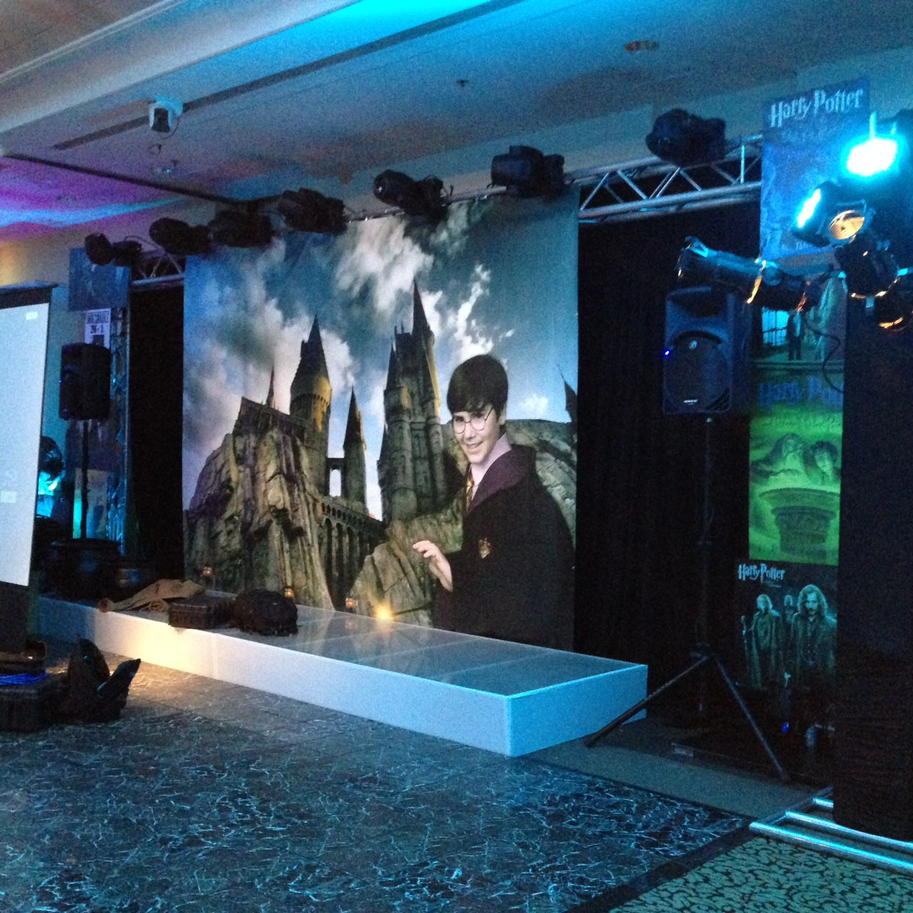 Backdrops for Parties